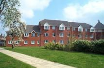 Flat to rent in Melford Place...