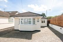 Detached Bungalow in Whitby Avenue, Brentwood...