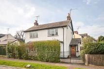 4 bedroom Detached house to rent in Park Way, Brentwood...