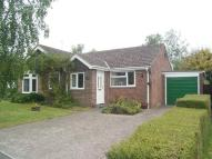 Detached Bungalow in Willis Close...