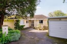 Bungalow for sale in Summerhill Road...
