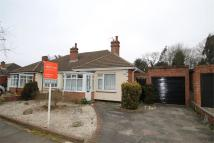 Semi-Detached Bungalow for sale in Springfield Gardens...