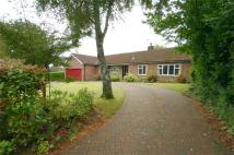 4 bed Detached Bungalow for sale in Homestead Road...