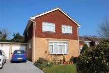 Detached property for sale in Denver Close, Petts Wood...