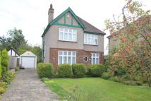 Detached house in Crofton Road, Orpington...