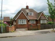 Detached Bungalow for sale in The Avenue, Blaby