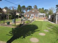 Detached Bungalow for sale in 74 Forest Road...