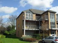 Apartment to rent in Dudley Whenham Close