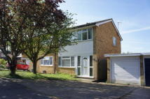 3 bedroom semi detached property to rent in Cottesford Close...