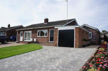 Semi-Detached Bungalow for sale in Castle Rise, Hadleigh...
