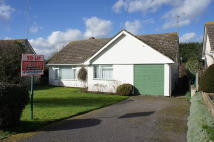 Detached Bungalow to rent in Raven Way, Hadleigh...