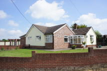 Detached Bungalow in White Street Green...