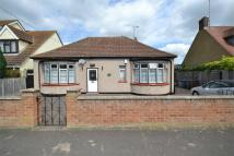 Detached Bungalow in Lampits Hill Avenue...