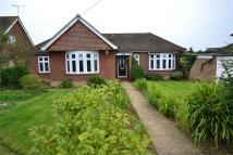 3 bedroom Detached Bungalow in Branksome Avenue...