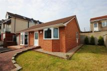 Detached Bungalow for sale in Reynolds Walk, Horfield...