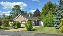 Millbrook Close Detached Bungalow for sale