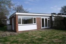 Chichester Road Bungalow to rent