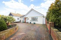 Detached Bungalow in St Marys Close...