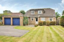 3 bed Detached Bungalow in The Drive, Craigweil...