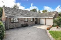 Detached Bungalow in Stanbrok Close...
