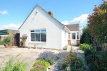 Detached Bungalow in Middleton Road, Felpham...