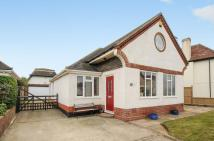 Bungalow for sale in First Avenue, Felpham...