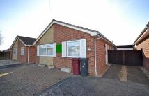 Detached Bungalow for sale in Roundstone Way, Selsey...