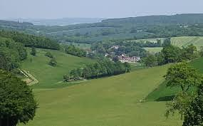 Southdowns