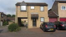 2 bed Detached property to rent in Linnet, Orton Wistow...