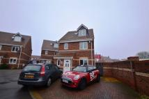 4 bed house in Wroxton Court, Eye...