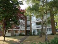 Ground Flat to rent in Lemsford Road...