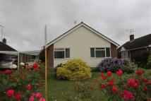 3 bedroom Detached Bungalow in Bicknacre