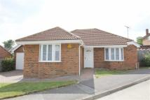Detached Bungalow in Little Baddow, Essex