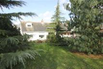 4 bed Chalet for sale in Althorne, Essex
