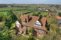 Detached house for sale in Purleigh, Essex