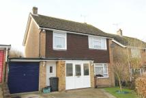 Detached house for sale in Little Baddow, Essex