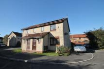 3 bedroom semi detached house to rent in Paddock Close...
