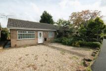 Rodborough Bungalow for sale