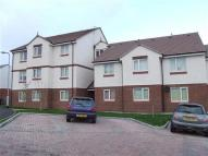 property to rent in Argyll Drive, Harraby