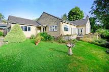 Bungalow for sale in Derwent Edge, Main Road...