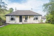 Detached Bungalow for sale in Hillside...