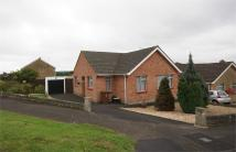 Detached Bungalow in Lady Coventry Road...