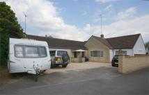 5 bed Detached Bungalow in ASHLEIGH...