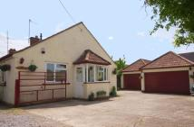 Semi-Detached Bungalow in 138, Oxford Road, CALNE...
