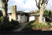 Detached Bungalow in Chaucer Road...