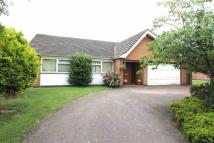 3 bed Detached Bungalow in Bulkington Road, Wolvey