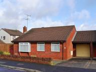 Detached Bungalow for sale in Tilley Close, Keynsham...