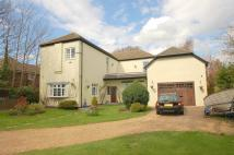 4 bedroom Detached property for sale in Western Way, Alverstoke...