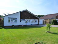 3 bedroom Detached Bungalow in Willow Lane, Appleton