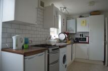 Ambler Road semi detached house to rent